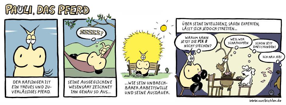 pauli_das_pferd - der_haflinger