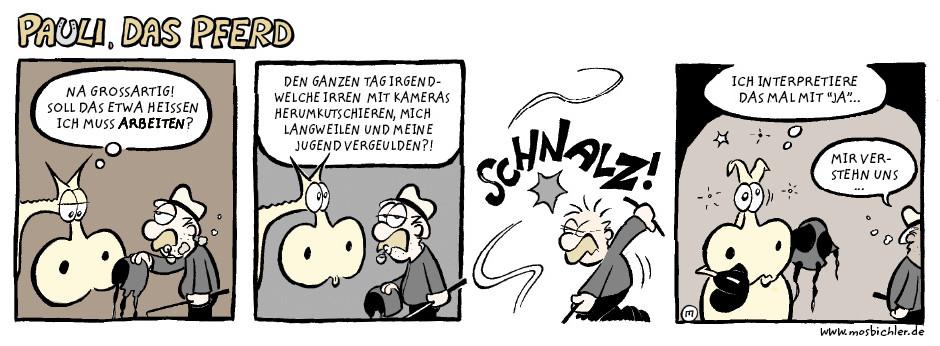 pauli_das_pferd - mir_verstehn_uns